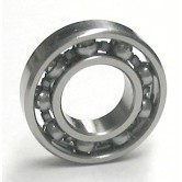 Open Stainless Bearings